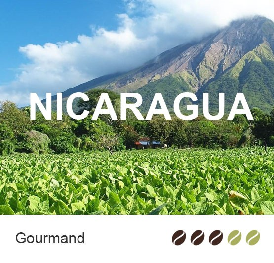 Café en grain Bio du Nicaragua