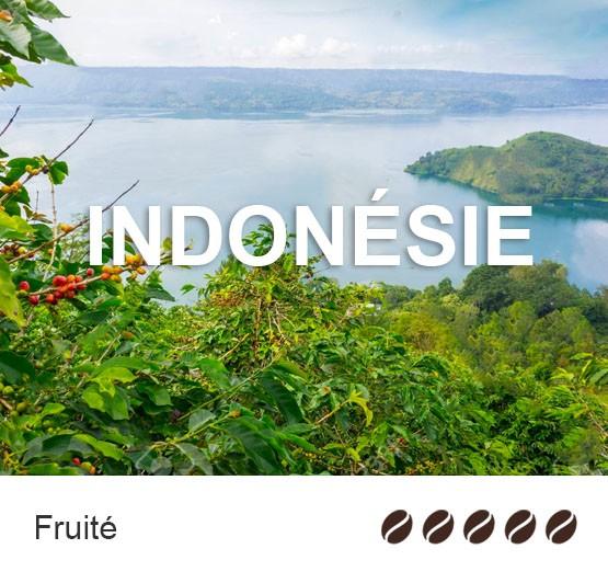 Café en grain Bio d'Indonésie