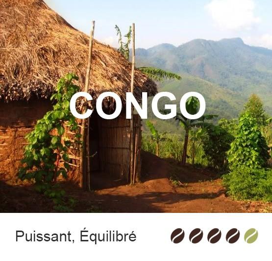 Café en grains Congo bio