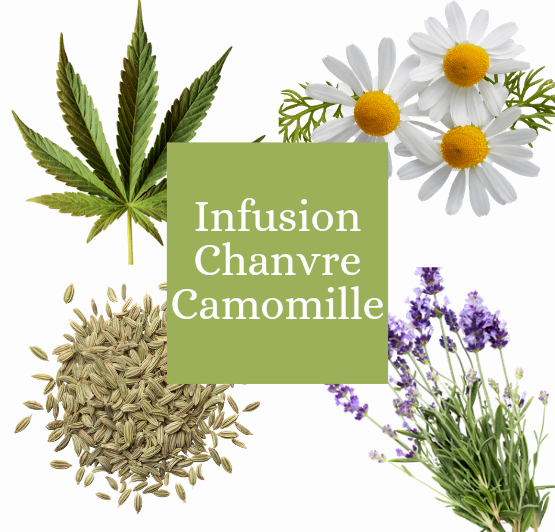 Infusion chanvre camomille