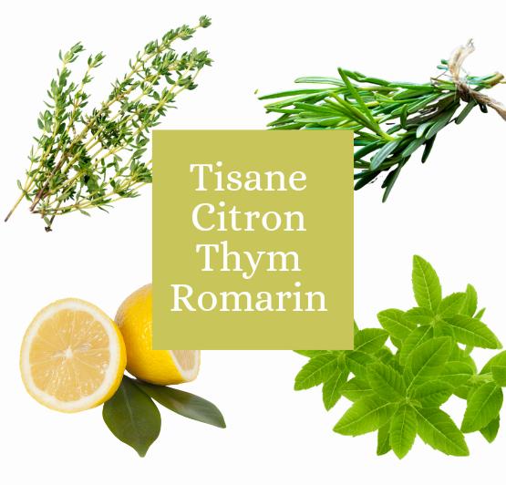 Tisane thym romarin citron