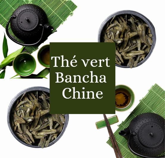 thé vert Bancha bio